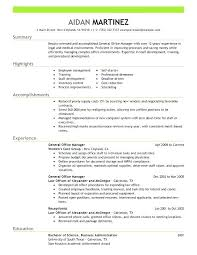 Administrative Officer Resume Sample Chief