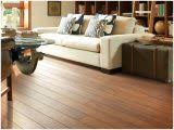 9 awesome photograph of shaw hardwood floor cleaner 37502 floors