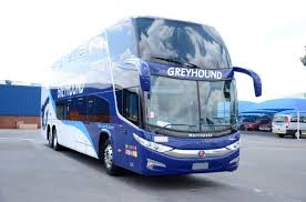 Do Greyhound Australia Buses Have Toilets by Dreamliner The Difference Between Business And Luxury Class
