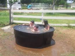 Galvanized Horse Trough Bathtub by Photo Album Horse Trough Tub All Can Download All Guide And