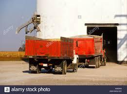 INDIANA Red Grain Trucks Bringing Harvested Corn To Grain Elevator ... 1949 1953 Chevrolet 2 12 Ton Grain Truck 1983 Ford F700 Sa Grain Truck 1940 32500 Classic Cars In Plano Dont 1959 C60 Farm For Sale Havre Mt 9274608 Intertional Loadstar V12 Fs2017 Farming Simulator Man 26364 Grain Trucks For Sale From Lithuania Buy Truck Wk13556 Trucks Simulator 2017 Lot 1078 1965 Intertional Fleetstar 1900 Lvo Fh16 1974 Gmc Model 6000 Huggy Bears Consignments Appraisals 1854 Truck19812 Stewart Farms Mi