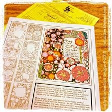 Art Journal Coloring Book By Catherine Scanlon