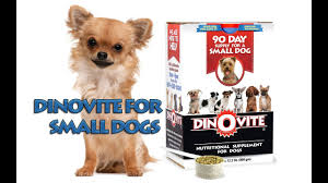 Dinovite For Small Dogs Saks 10 Off Coupon Code Active Coupons Roamans Online Codes Bjorn Borg Baby Laz Fly Promo Online Discounts Dinovite For Small Dogs All Natural Flea Repellent Cats 100 Ct Tablets Away Restaurant Savings Coupons Garden Buffet Windsor Powder Up To 15 Lb Supromega 6 Pack 48 Oz Fish Oil Internet Warner Cable Sale Cnn August 2019 Us Diesel Parts Promo Codes Hotdeals