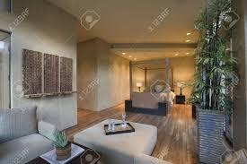 geräumige wohnzimmer innenraum mit bambus zimmerpflanze