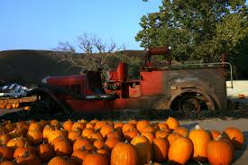 Pumpkin Patch Santa Clarita by Top 10 Things You Must Do During Fall K Frog 95 1 Fm And 92 9 Fm