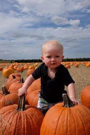 Pumpkin Patch With Petting Zoo Inland Empire by 7 Easy Tips On How To Do Dewberry Farm