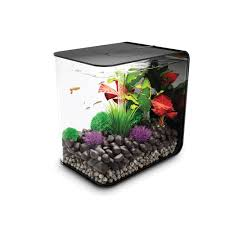 aquarium biorb flow 15 litres noir mcr biorb animalerie truffaut