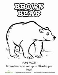 Awesome Design Ideas Bear Coloring Pages Preschool Kindergarten Worksheets Brown Page