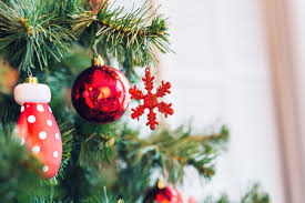 Longest Lasting Christmas Tree by Christmas Tree Tips How To Keep It Alive Until Santa Arrives