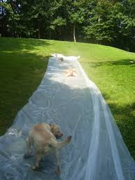 Redneck Slip & Slide – Quiver Full Of Blessings More Accurate Names For The Slip N Slide Huffpost N Kicker Ramp Fun Youtube Triyaecom Huge Backyard Various Design Inspiration Shaving Cream And Lehigh Valley Family Just Shy Of A Y Pool Turned Slip Slide Backyard Racing With Giant 2010 Hd Free Images Villa Vacation Amusement Park Swimming 25 Unique Ideas On Pinterest In My Kids Cided To Set Up Rebrncom Crazy Backyard Slip Slide