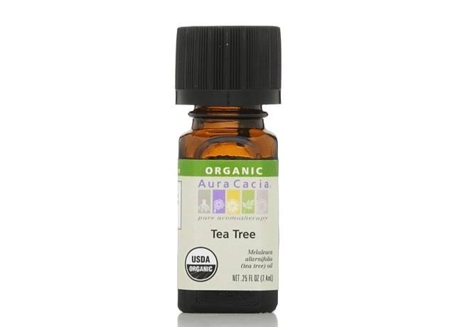Aura Cacia Organic Essential Oil - Tea Tree, 7.4ml