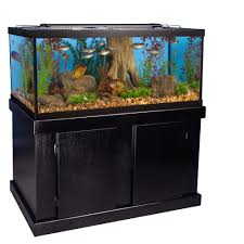 Spongebob Aquarium Decor Set by Fish Supplies Aquarium Supplies U0026 Accessories Petsmart