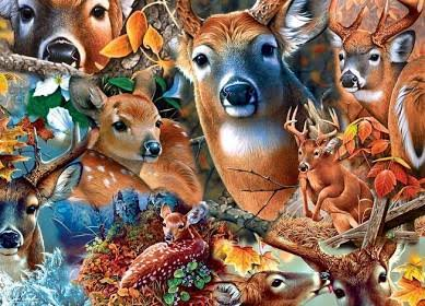 Masterpiece Forest Beauties Jigsaw Puzzle - 1000ct