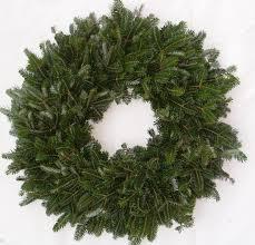 Fraser Fir Christmas Trees by Fresh Christmas Trees And Wreaths Calie U0027s Acre
