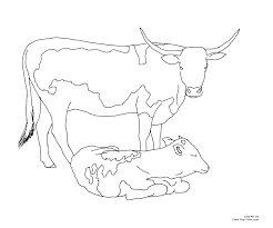 Longhorn Cow Coloring Page