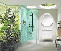 die besten pflanzen für das badezimmer handwerk in