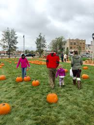 Pumpkin Patch Milwaukee by Home Gr Own