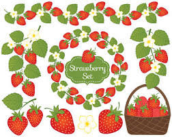 Strawberry clipart branch 6