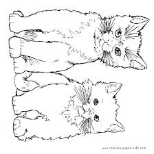 Cat Color Sheet