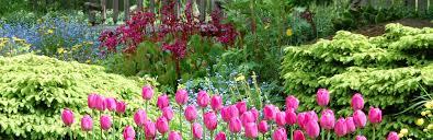 Garden Alaska Botanical Garden Unique 50 Most Stunning University