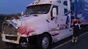 100 Cow Truck A Boise State Equipment Hit A And Someone Took A Picture