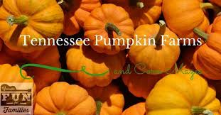 Pumpkin Patches In Milton Wv by 100 Milton Pumpkin Festival 2015 Hours Admission Catalogue