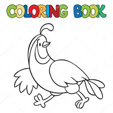 Coloring Book Of Little Quail Stock Vector 60590733