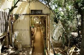 MILK TEETHS Moorten Botanical Garden & Cactarium
