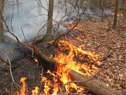 outdoor burning ban in effect may 1 sept 30 news peachtree