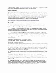 Resume Example For Bank Teller Unique Skills Summary Examples