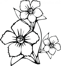 Coloring Pages Pretty Flowers Page Beautiful Small Four Leaf Clover Printable