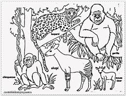 Beautiful Safari Animals Coloring Pages 97 On Online With