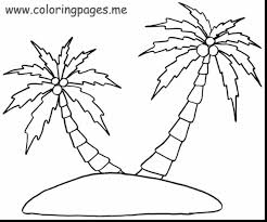 Spectacular Palm Tree Coloring Pages With Page And
