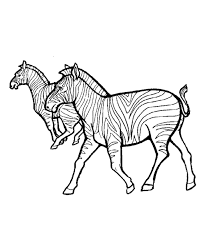 African Zebras Wild Animal Coloring Page