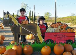 Corona Pumpkin Patch Hours by Pumpkin Patch Peltzer Farms Temecula Living In The Temecula Valley
