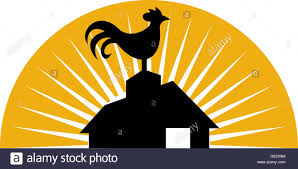 Rooster Crowing On Top Of Farm House Or Barn Stock Photo, Royalty ... Collage Illustrating A Rooster On Top Of Barn Roof Stock Photo Top The Rock Branson Mo Restaurant Arnies Barn Horse Weather Vane On Of Image 36921867 Owl Captive Taken In Profile Looking At Camera Perched Allstate Tour West 2017iowa Foundation 83 Clip Art Free Clipart White Wedding Brianna Jeff Kristen Vota Photography Windcock 374120752 Shutterstock Weathervane Cupola Old Royalty 75 Gibbet Hill