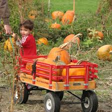 Best Pumpkin Patch Snohomish by Top Halloween Events In The West Sunset