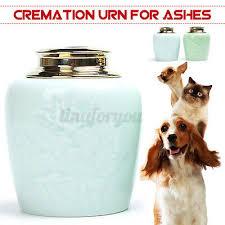 tierurnen haustierurnen tiersarg hunde katzen urne keramik 850ml 11 5x13 8cm neu ebay