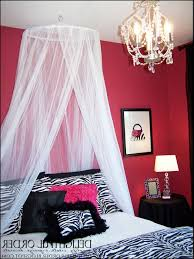 Zebra Decor For Bedroom by Pink And Black Room Designs House Designing Plans Zebra Ideas