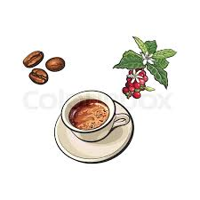 Stock Vector Of Sketch Hand Drawn Fried Black Coffee Beans Tree Branch