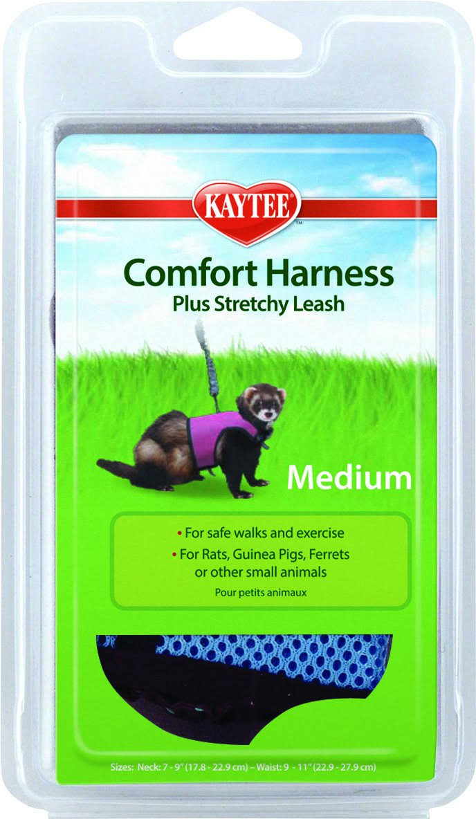 Super Pet Ferret Comfort Harness and Stretchy Leash - Medium, Colors Vary