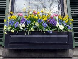 DecorationChristmas Flower Boxes Autumn Planting Perennials Planter Box Bench Plans Rustic Best