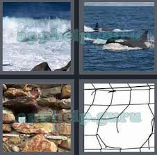 4 Pics 1 Word Level 401 to 500 6 Letters Picture 404 Answer Game