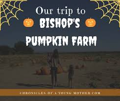 Bishop Pumpkin Patch Lincoln Ca by Our Trip To Bishop U0027s Pumpkin Farm Chronicles Of A Young Mother