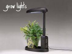 Grow Lights For Beginners Start Plants Indoors