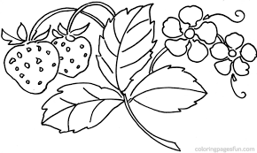 Flowers Coloring Pages Page