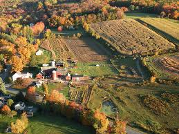 Kent Farms Pumpkin Patch by The Matthews Group Lists County Corn Mazes And Pumpkin Patches