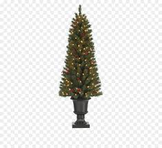 Tall Christmas Tree Png Download