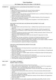 Download Strategy Business Development Manager Resume Sample As Image File