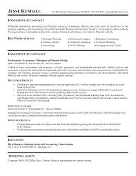 Professional Accounting Resume Examples